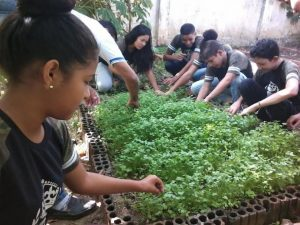 Escola Campo Sementes e Mudas, na Paraíba. Imagem mostra estudante cuidando de horta