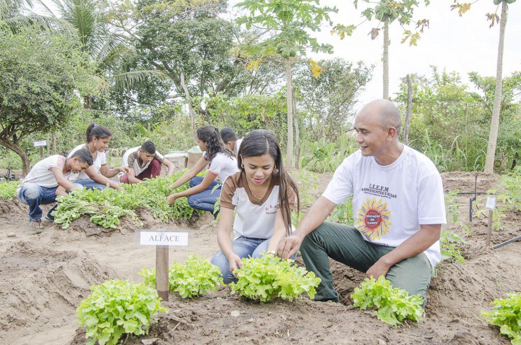 Professor e alunos em horta
